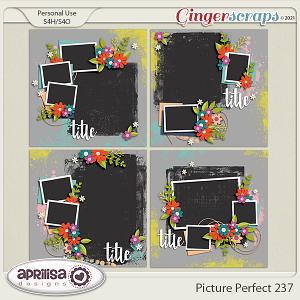 Picture Perfect 237 by Aprilisa Designs