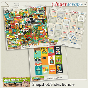 Snapshot/Slides Bundle by Clever Monkey Graphics
