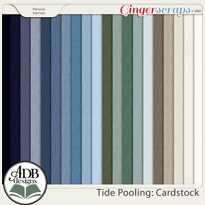 Tide Pooling Solid Papers by ADB Designs