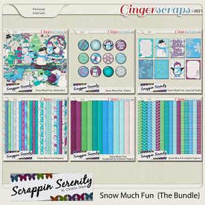 Snow Much Fun {The Bundle}