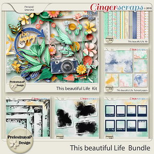This beautiful Life Bundle
