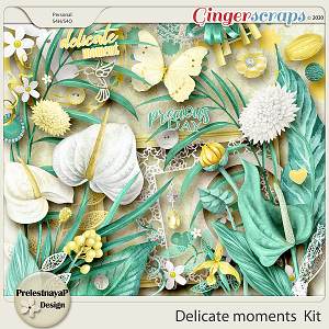 Delicate moments Kit
