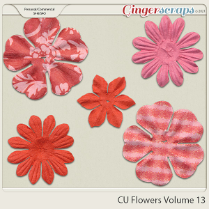Commercial Use Flowers Volume 13 by Connie Prince