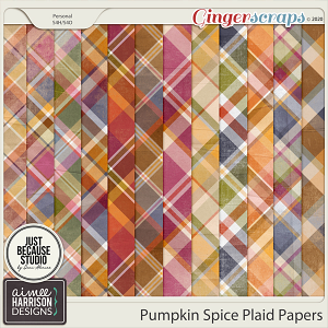Pumpkin Spice Plaid Papers by Aimee Harrison and JB Studio