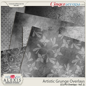 Artistic Grunge Overlays Vol. 2 - CU by Alexis Design Studio