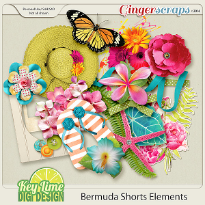 Bermuda Shorts Elements