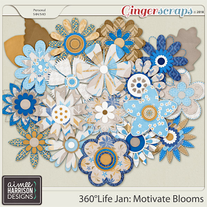 360°Life Jan: Motivate Blooms by Aimee Harrison