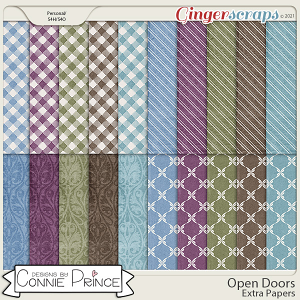 Open Doors - Extra Papers by Connie Prince