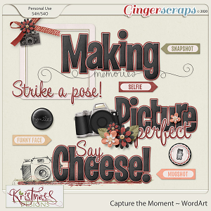 Capture the Moment WordArt