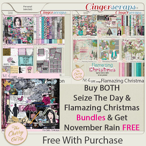 The Cherry On Top and Art & Life Scraps:  Grab Bag Flamazing Christmas, Seize The Day Collections and November Rain Free With Purchase