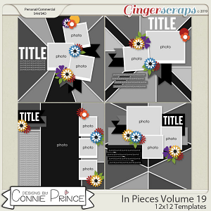 In Pieces Volume 19 - 12x12 Temps (CU Ok) by Connie Prince