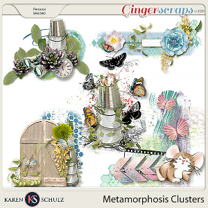 Metamorphosis Clusters by Karen Schulz