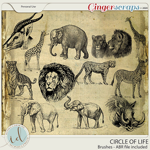 Circle Of Life Brushes by Ilonka's Designs