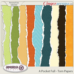 A Pocket Full - Torn Papers by Aprilisa Designs