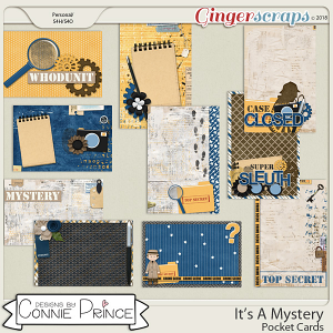 It's A Mystery - Pocket Cards by Connie Prince