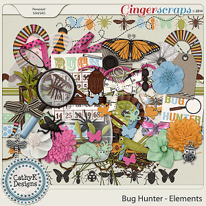 Bug Hunter - Elements