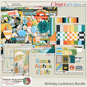 Birthday Lockdown Value Bundle by Trixie Scraps Designs