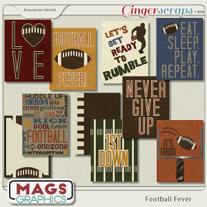 Football Fever JOURNAL CARDS