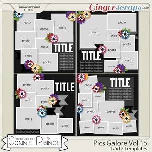 Pics Galore Volume 15 - 12x12 Temps (CU Ok) by Connie Prince