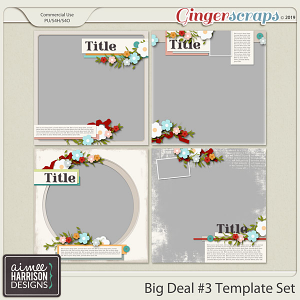 Big Deal #3 Templates by Aimee Harrison