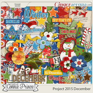 Project 2015 December - Kit