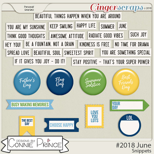 #2018 June - Snippets by Connie Prince