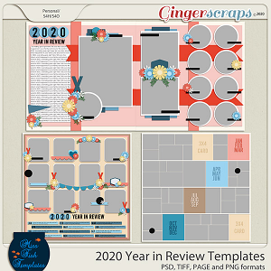 2020 Year in Review Templates by Miss Fish
