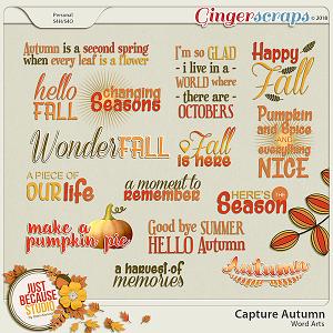 Capture Autumn Word Arts by JB Studio