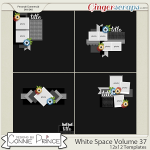 White Space Volume 37 - 12x12 Temps (CU Ok) by Connie Prince