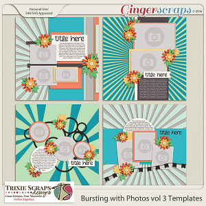 Bursting with Photos vol 3 Templates by Trixie Scraps Designs