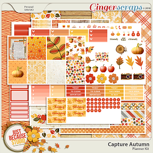 Capture Autumn Printable Planner Kit by JB Studio