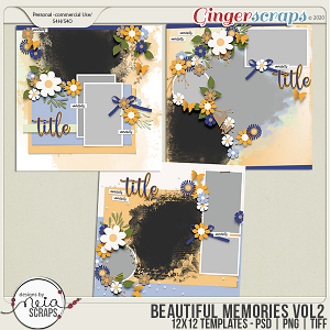 Beautiful Memories - VOL.2 - Templates - by Neia Scraps