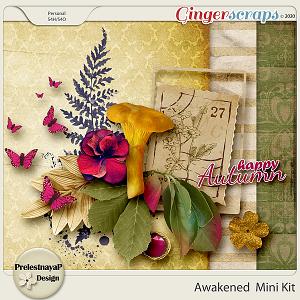 Awakened Mini-Kit
