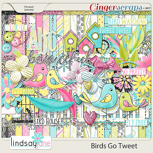 Birds Go Tweet by Lindsay Jane