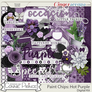 Paint Chips Purple - Kit by Connie Prince