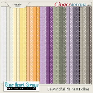 Be Mindful Plains & Polkas