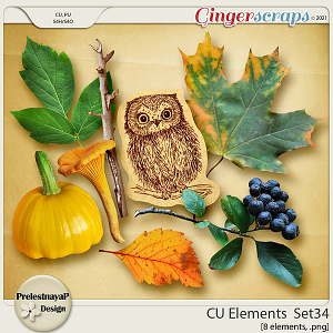 CU Elements Set34 by PrelestnayaP Design