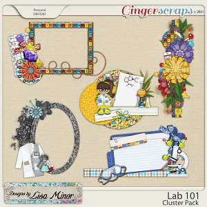 Lab 101 Cluster Pack from Designs by Lisa Minor