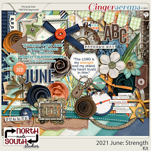 2021 June: Strength Full Kit by North Meets South Studios