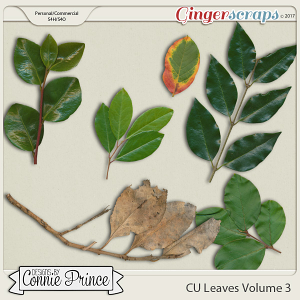 Commercial Use Leaves Volume 3