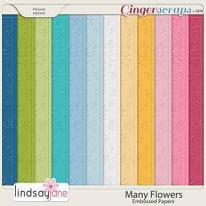 Many Flowers Embossed Papers by Lindsay Jane