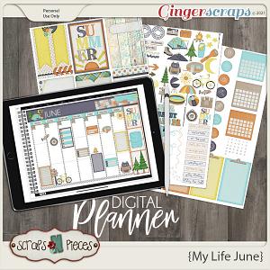My Life June Planner Pieces - Scraps N Pieces