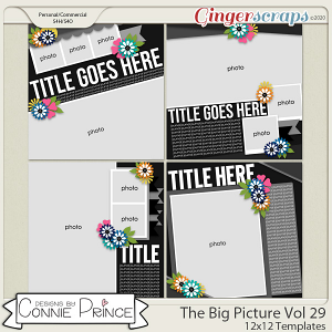 The Big Pic Volume 29 - 12x12 Temps (CU Ok) by Connie Prince