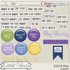#2018 May - Snippets by Connie Prince