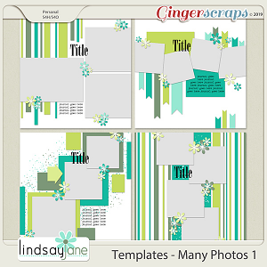 Templates - Many Photos 1 by Lindsay Jane