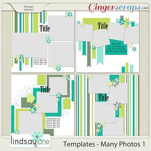 Templates - Many Photos 1 by Lindsay Jane