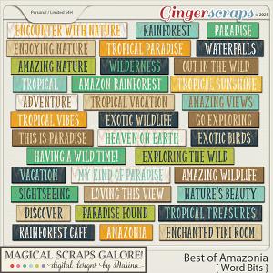 Best of Amazonia (word bits)