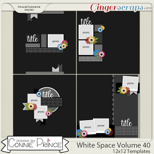 White Space Volume 40 - 12x12 Temps (CU Ok) by Connie Prince