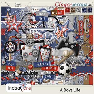 A Boys Life by Lindsay Jane