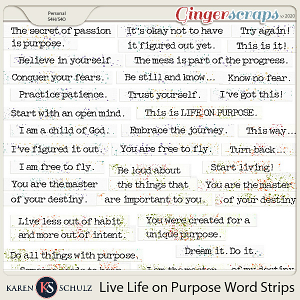 Live Life on Purpose Word Strips by Karen Schulz